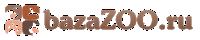 Bazazoo