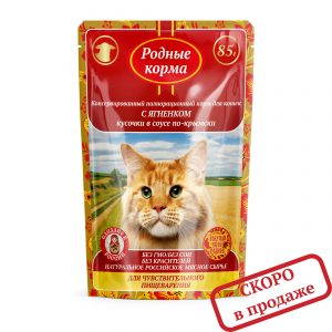 Кусочки всоусе по-Крымски сянгенком Длячувствительного пищеварения